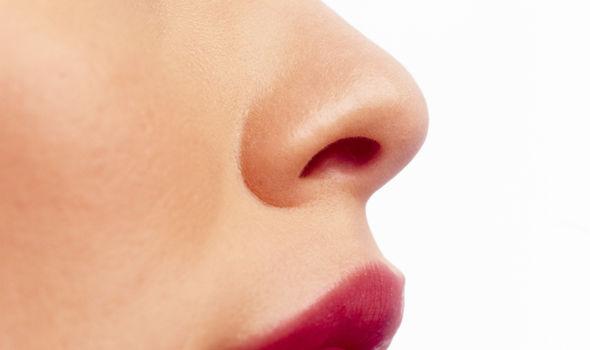 Resultado de imagen de nose